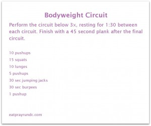 A Total Body Circuit