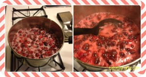 Better Than a Can Cranberry Sauce!