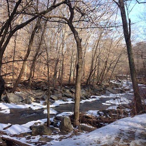 beautiful trail views