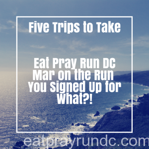 Five Trips to Take
