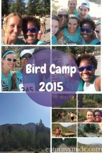 Bird Camp.