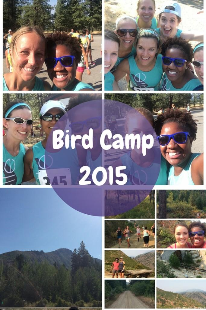 Bird Camp 2015 Recap