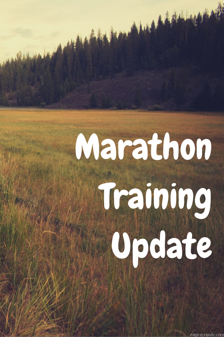 marathon training update