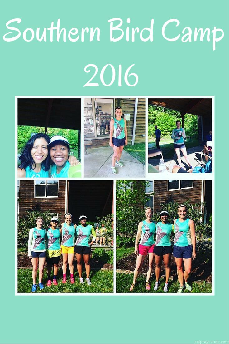 Southern Bird Camp 2016