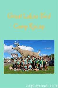 great-lakes-bird-camp-recap